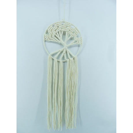 Dream Catcher 1821384